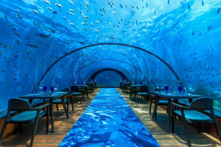 hurawalhi5-8undersea-restaurantinterior1