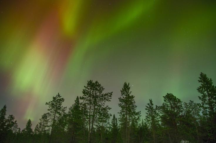 aurora-borealis-768703_1920