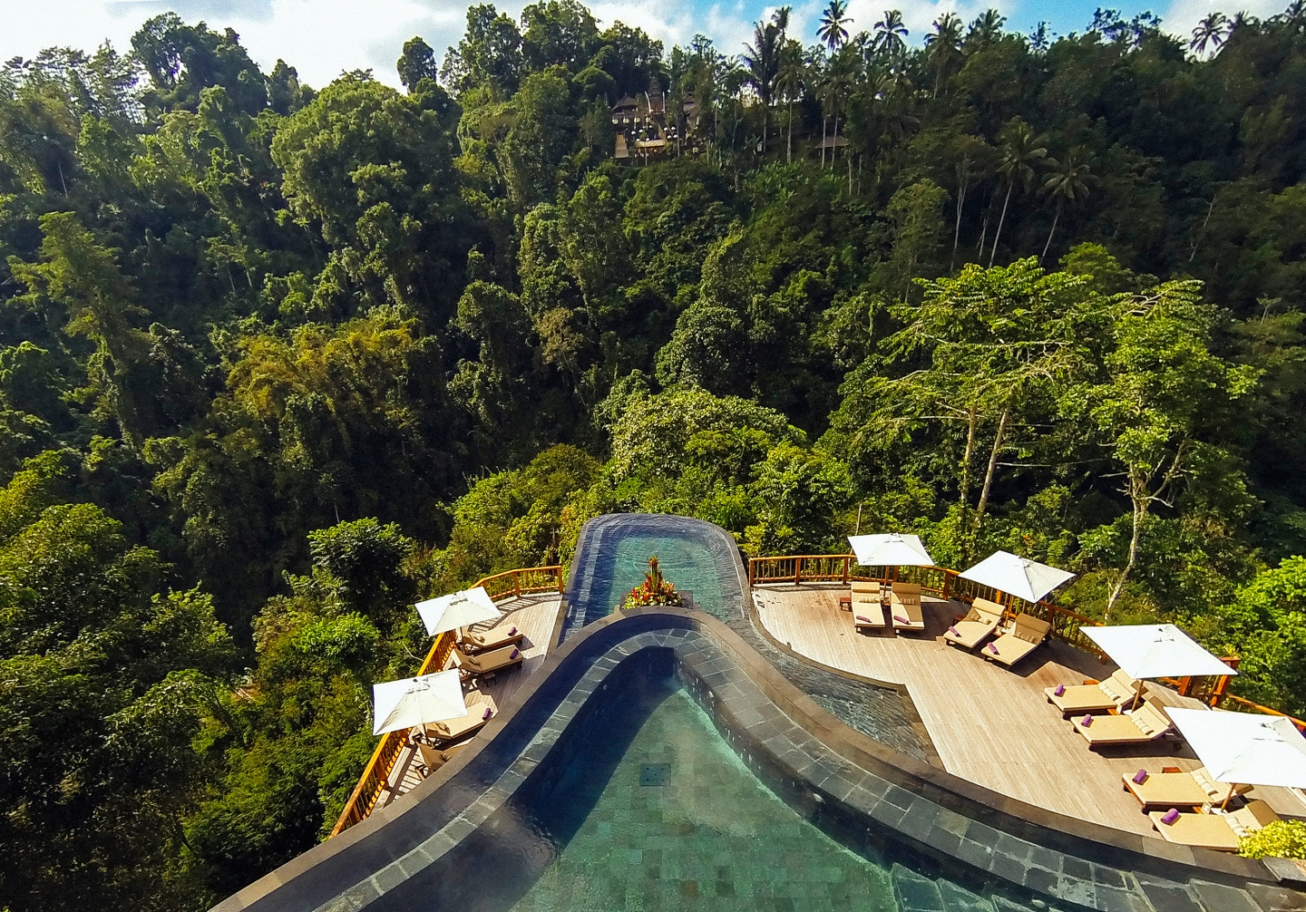 hg-pool-high-res-jungle-view_new-copy